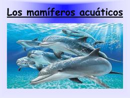 Los mamíferos acuáticos