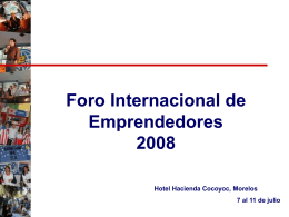 FIE REDISEÑO ESTRATEGICO ENERO 2003