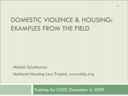 Domestic Violence and Rental Housing