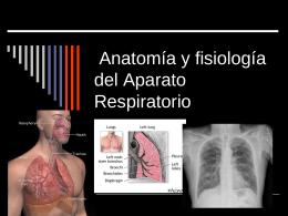 Tema 4: Anatomía y fisiología del Aparato