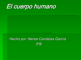 El cuerpo humano - Tercer Ciclo del Pío Baroja |