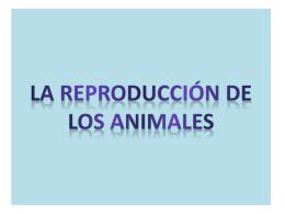 LA REPRODUCCIÓN DE LOS ANIMALES