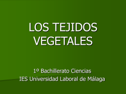 Diapositiva 1 - Universidad Laboral de Málaga