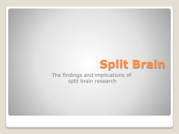 Split Brain - Mounds View High School