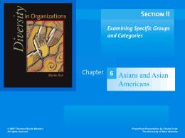 Diversity in Organizations 1e.