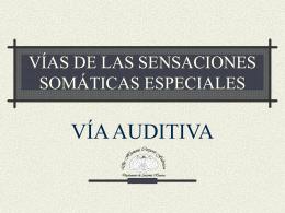 VÍAS DE LAS SENSACIONES SOMÁTICAS ESPECIALES