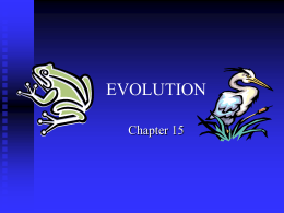 PowerPoint Presentation - EVOLUTION