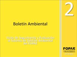 Boletín Ambiental