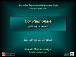 Oxigenoterapia Crónica Domiciliaria