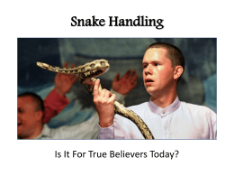 Snake Handling - The Good Teacher