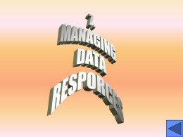 8. MANAGING DATA RESOURCES