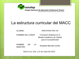 La estructura curricular del MACC