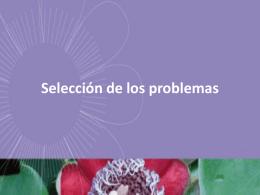 Análisis y selección de los problemas