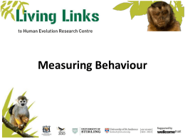 Measuring Primate Behaviour