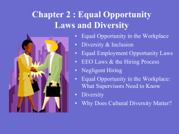 Chapter 2 Workplace Diversity