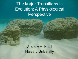 The Major Transitions in Evolution: A