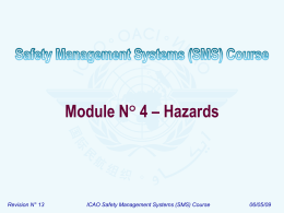 ICAO SMS Module 04