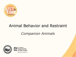 Animal Behavior and Restraint : Companion Animal
