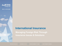 Managing Foreign Risk Through Insurance Issues &