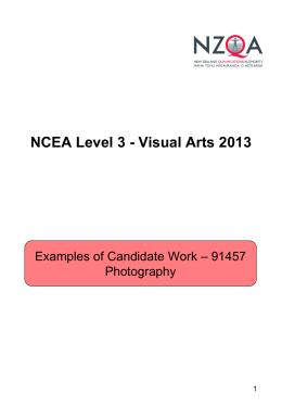 NCEA Level 3 - Visual Arts 2011 - Photography -