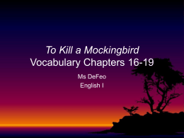 To Kill a Mockingbird Vocabulary Chapters 16-19