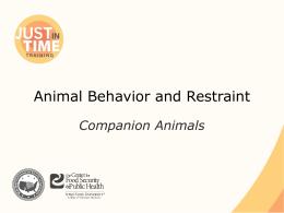 Animal Behavior and Restraint: Companion Animal