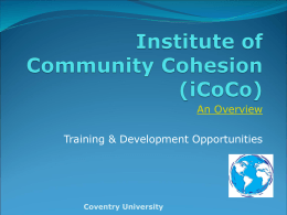 Institute of Community Cohesion (iCoCo)