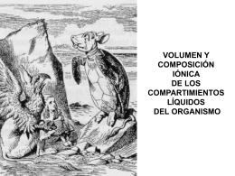 VOLUMEN Y COMPOSICIÓN IÓNICA DE LOS