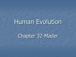 Human Evolution - Bloomsburg University of