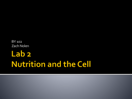 Lab X Nutrition and the Cell