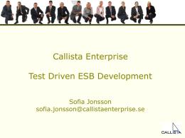 Tankar kring kompetensförsörjning inom Callista