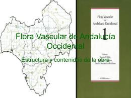 Flora Vascular de Andalucía Occidental