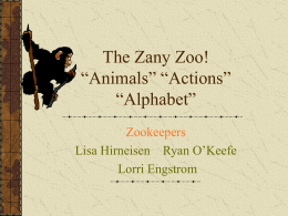 "The Zany Zoo! ""Animals"" ""Actions"" ""Alphabet"""