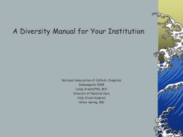 A Diversity Manual for Your Institution
