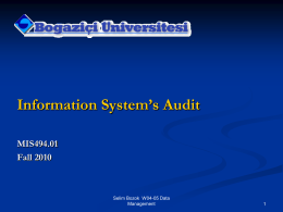 Information Technology Auditing - CIMS