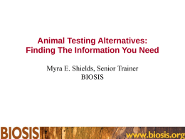 Animal Testing Alternatives: Finding The