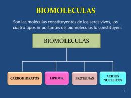 CARBOHIDRATOS Monosacaridos