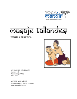 Manual-Tai20121