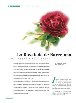 La Rosaleda de Barcelona - Verdiland Ediciones, s.l.