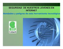 Ventajas y riesgos del uso de Internet