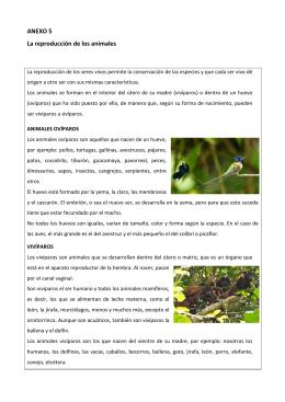 ANEXO 5 La reproducción de los animales