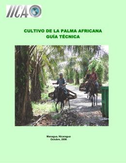 CULTIVO DE LA PALMA AFRICANA GUÍA TÉCNICA