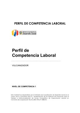 Perfil vulcanizador - Secretaría Técnica de Capacitación y