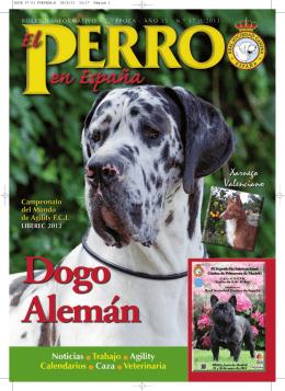 Xarnego Valenciano - Real Sociedad Canina de España