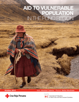 Aid to vulnerAble populAtion in the Puno Region