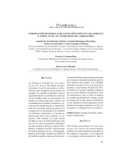 GERMINACIÓN DE SEMILLAS DE CONOCARPUS ERECTUS VAR