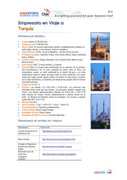 Empresario en Viaje a Turquía - SEO o el Posicionamiento Web