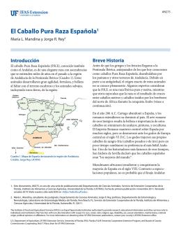 El Caballo Pura Raza Española1 - EDIS