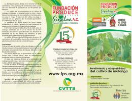 Rendimiento y adaptabilidad del cultivo de malanga