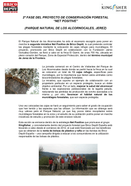 Acción forestal Net Positive de Brico Depôt en Jerez